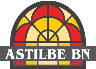 Astilbe BN